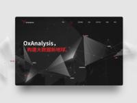 Data Analysis Company Website