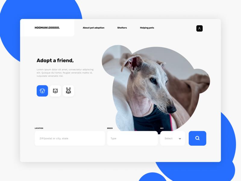 Website design | Adopt a friend search engine search bar animal and pet adopt dog blue design design agency minimal ui ux web webdesign website branding