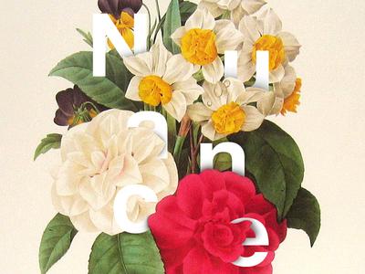 Nuance Flower V2 design nuance vegetal illustration typography nature color lettering logotype logo flower floral