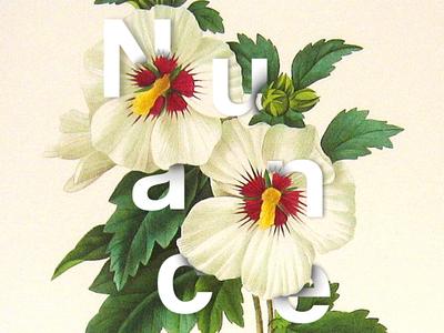 Nuance Flower V2 typography nature vegetal branding brand illustration floral flower color logotype logo design