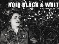 Noir Black & White Photoshop Actions Free Download