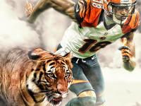 Cincinnati Bengals photo manipulation