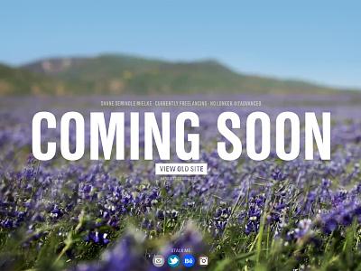 Coming Soon coming soon flowers splash photography purple