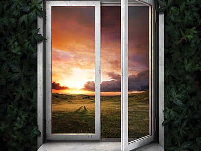 Hope for Today poster print nature green leaves field window