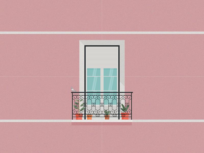 Pigeon on the balcony cactus bird balcony bright glass architecrure pink flowers vase window pigeon
