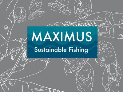 Maximus Rough3 fish logo design wip sustainable fishing food graphics