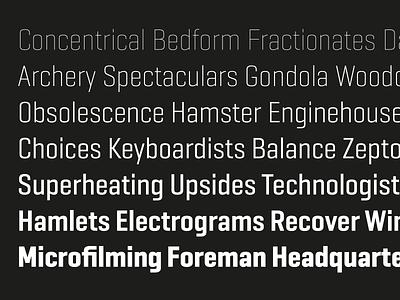 Geogrotesque Sharp Condensed ui logo illustration sans barcelona design type emtype typography font