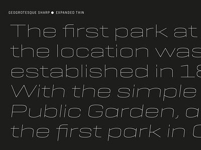 Geogrotesque Sharp ui logo illustration sans barcelona design type emtype typography font