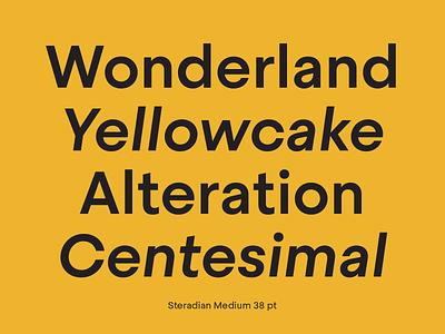 Steradian font family graphic design ui logo illustration sans barcelona design type emtype typography font