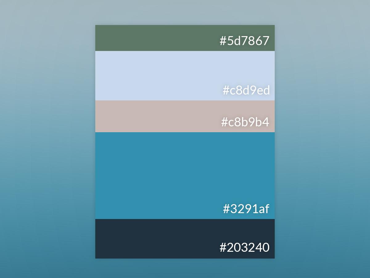 Blue 4 4 color inspiration colour palette vector blue colors of 2019 design