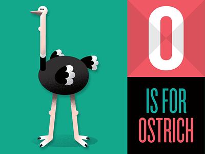O is for Ostrich illustration ostrich animal bird