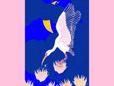 Ibis in moonlight emilysearle illustration emily searle magic sparkle bird king protea protea moons moonlight