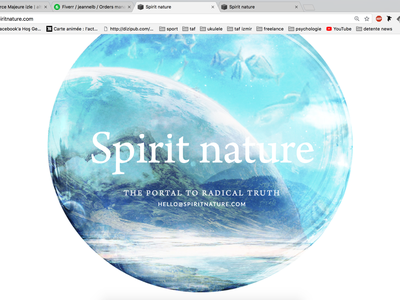 Spirit Nature website concept ui design brand guideline art direction branding banner design banner ads banner design