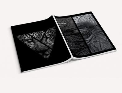 Magazine layout catalog design magazine design catalog layout magazine template