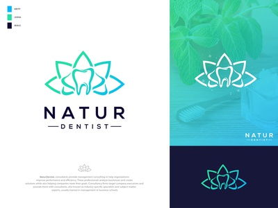 Natur Dentist - Natural dentistry center logo design branding tooth dentist health care dental app logo doctor medical dentists dentistry center natural dentist logo graphic design designer brand branding identity clever smart modern mark logomark brandmark illustration logo logo design vector branding design