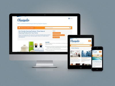 Cleanipedia mobile devices responsive ui