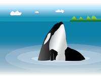 Orca Fish