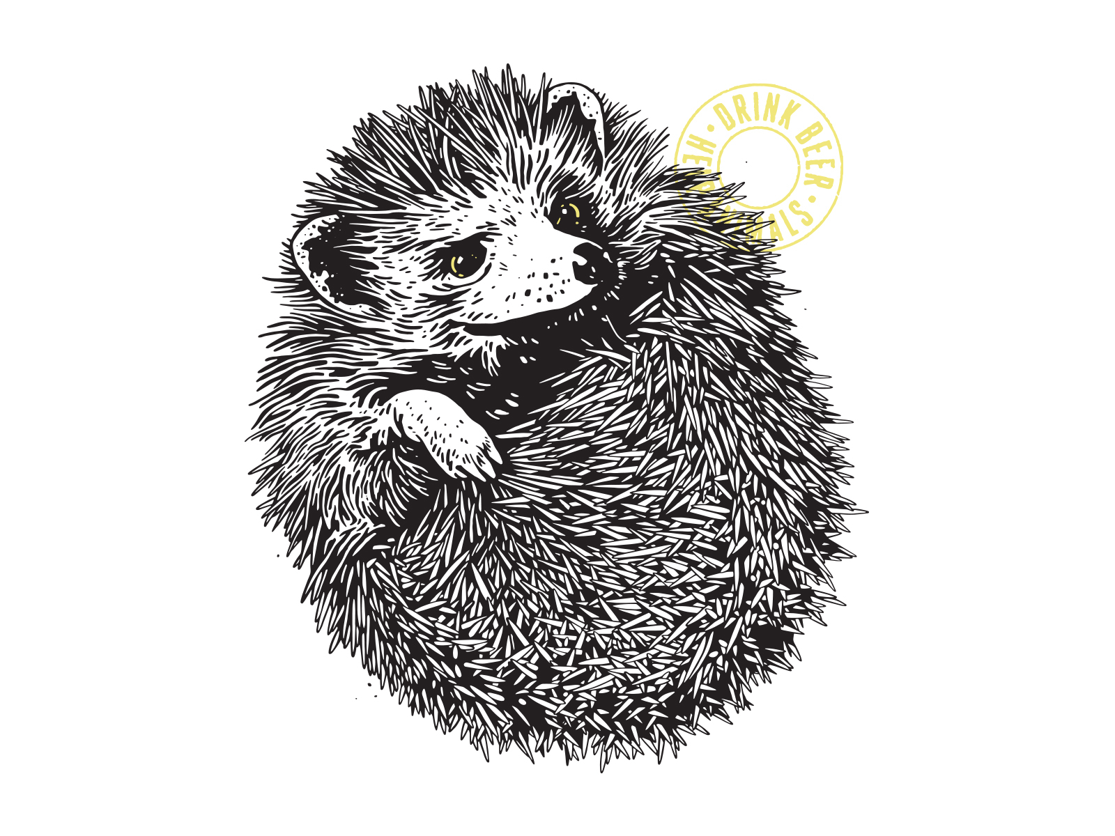 Wit-Bellied Hedgehog