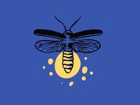firefly detail