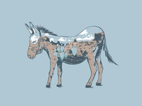 Desert Mule