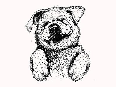 Pup illustration indiana pup labrador lab dog puppy