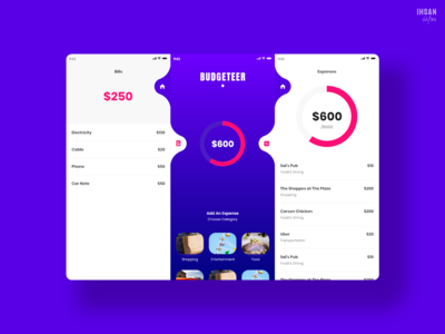 UI/UX - Budgeteer