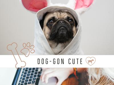 Dog Gon.Ics