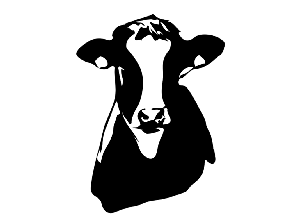 Cow Bust Silhouette Transparent illustration clean farm animal holstein dairy farm concept icon graphic  design logo silhouette vector cow