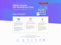 Landing Page Design - Bespoke Solutions