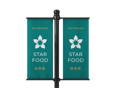 Star Food Delivery