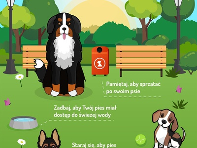 Infographic Safety Rules in dogs park dogs dog animals digital painting typography illustrator flat infografika infographic design infographic digital design art illustation digital art vector drawing illustration