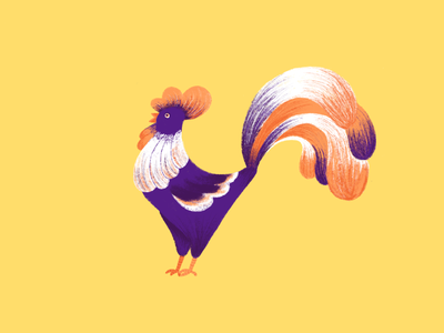 Just a Rooster animals rooster procreate flat illustration