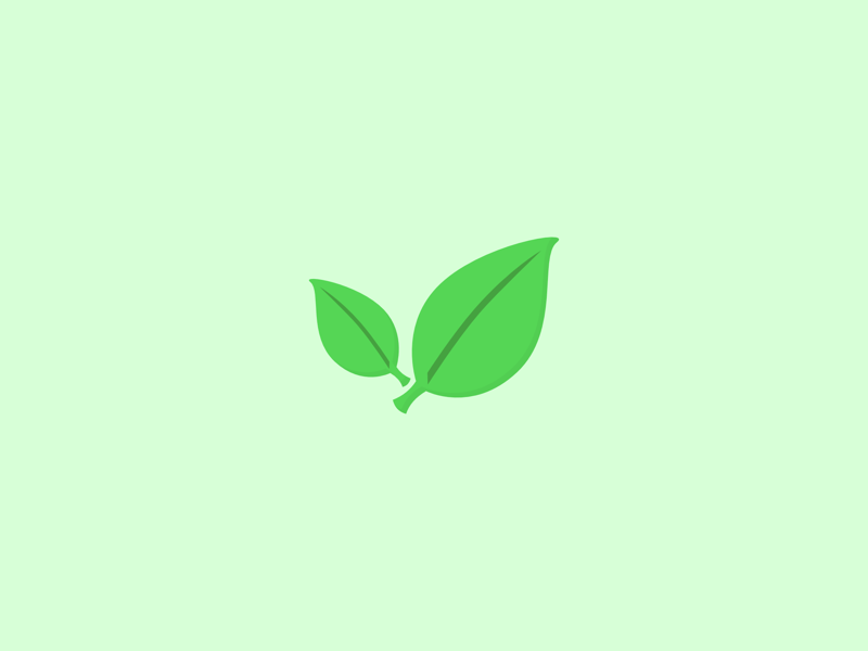Leafy growth foliage plant leaves leaf nature greenery