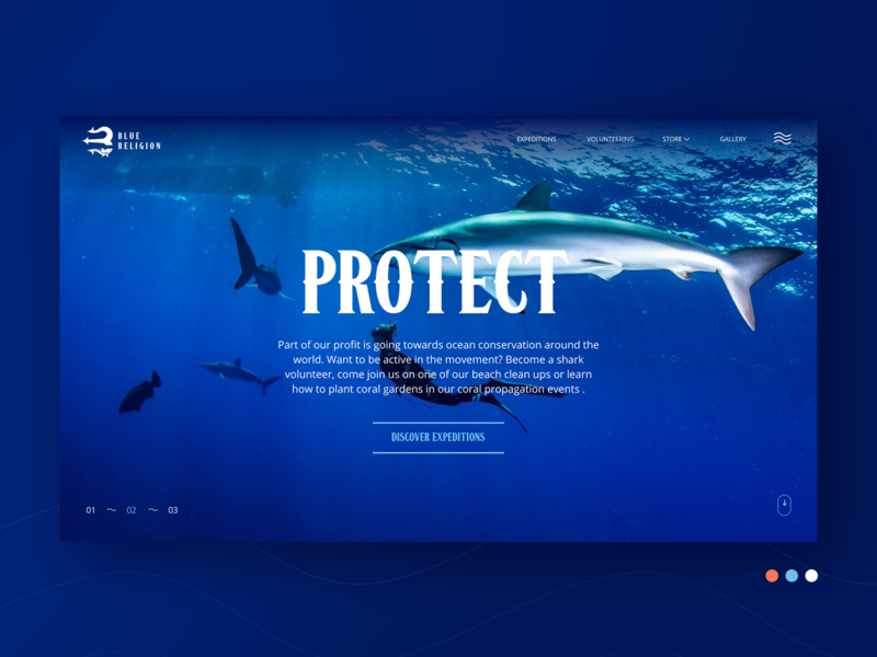 Blue Religion - Ocean adventures booking website photoshop figma ui ux booking trip website underwater sea ocean volunteer coral reef shark