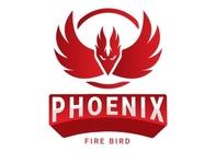 phoenix logo concept logotype logo design logo