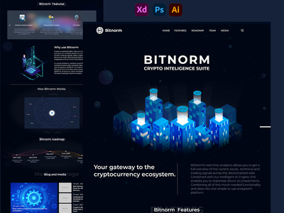 Bitnorm-Cryptointelligence Suite