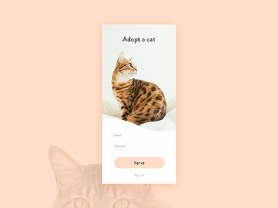 Sign Up - Daily UI 001 sign up cats ui