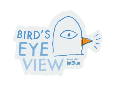Bird's Eye View 2 logo pigeon bird hand drawn