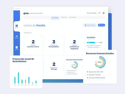 Smart Portfolio IDB design ui ux