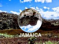 Graphic Tuesday! Jamaica Ball
