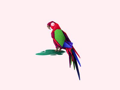 Macaw illustraor bird illustration bird icon illustration art design inspiration bird aviary illustration illustration aviary macawillustration macaw
