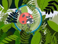 Microspot nature ladybug plants green procreate digitalart digital illustration digital illustration