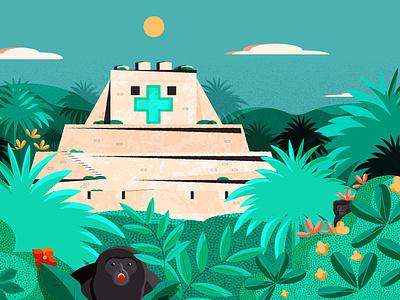 Learning Maya Medicinal Practices in Belize - header maya belmopan belmopan design minimal editorial editorial illustration vector illustrator illustration