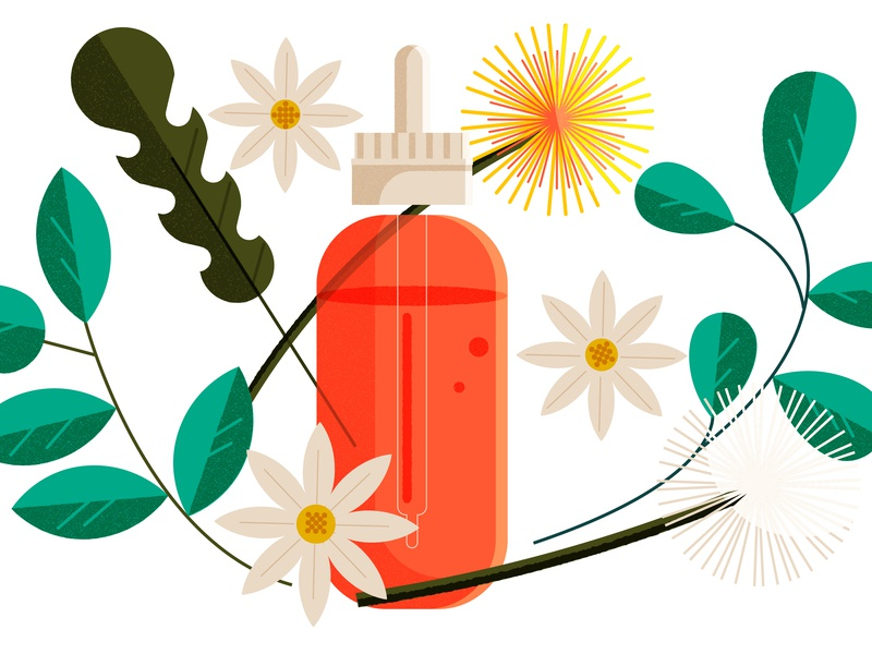 New York City is a Treasure Chest of Trash and Weeds vegan sustainable freegan health food minimal illustrator vector editorial illustration illustration editorial