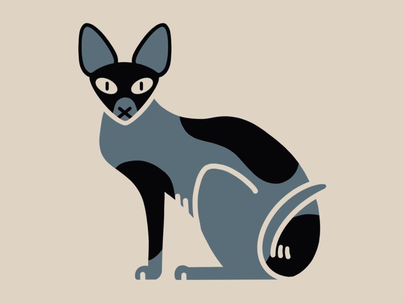 Sphynx cat 🇪🇬 graphic animal cat procreate illustration design