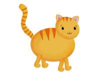 Big Chonkee Cat