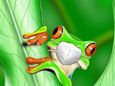Little good morning from Confined Frog green frog animal nature illustration procreate digital illustration digital painting digital art digital illustration digital