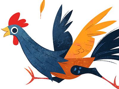 Chook illustration chicken