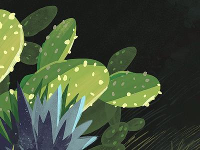 More Cactus green cactus plant desert art illustration