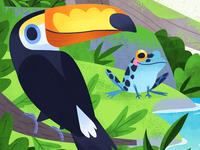 Toucan & Frog